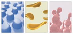 「Sweet Colors」/ 3DCGアニメーション(共作)
